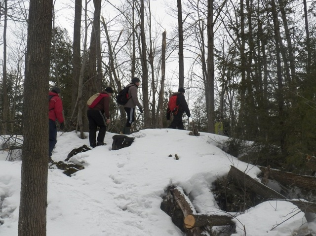 2014.03 Bruce Trail - 1