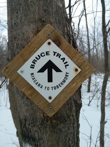 2014.03 Bruce Trail - 4
