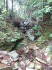 2014.09 Obóz Klasztor15 - czy to ma być ścieżka