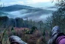 2016.04 Mlody Las - widoki Wye Valley